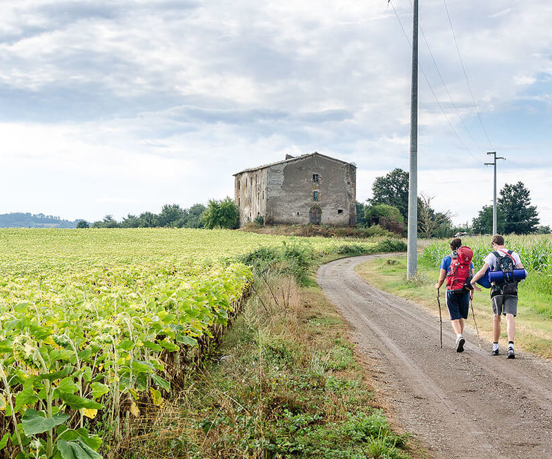 via francigena - escursione